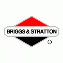 """VIPER 50"""" XL MODEL BRIGGS & STRATTON"""